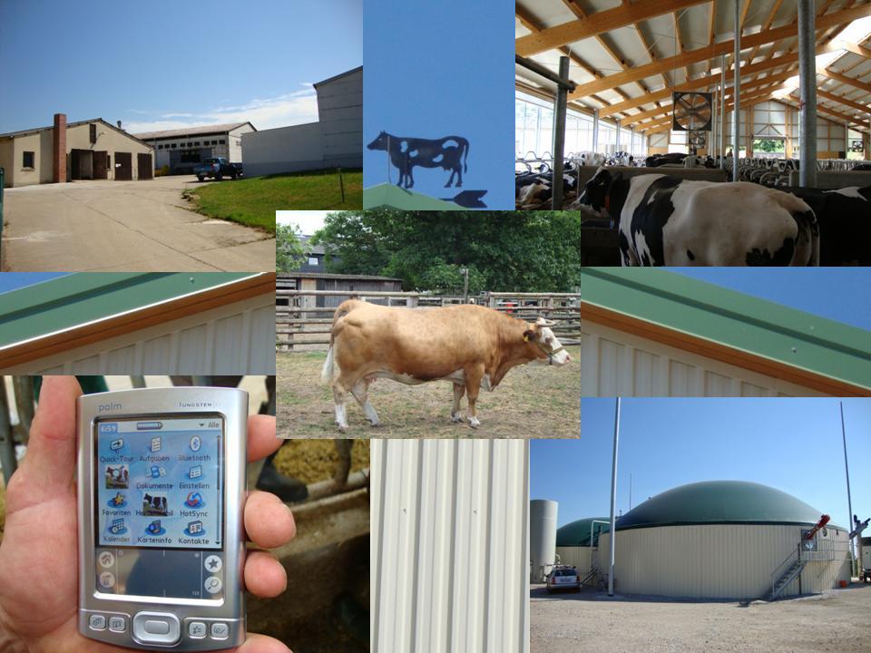 Кооперативните ферми на територията на бившата Германска Демократична Република са живи